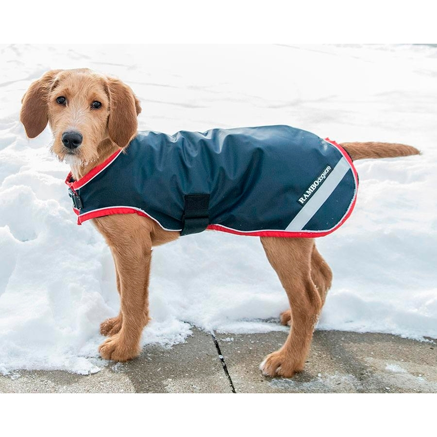 Rambo Waterproof Dog Rug (Navy/Red)