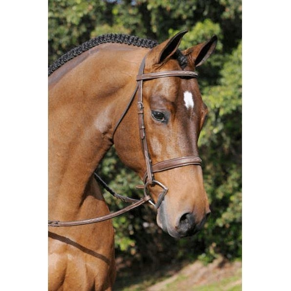 Tribute Bridle with Raised Fancy Laced Reins