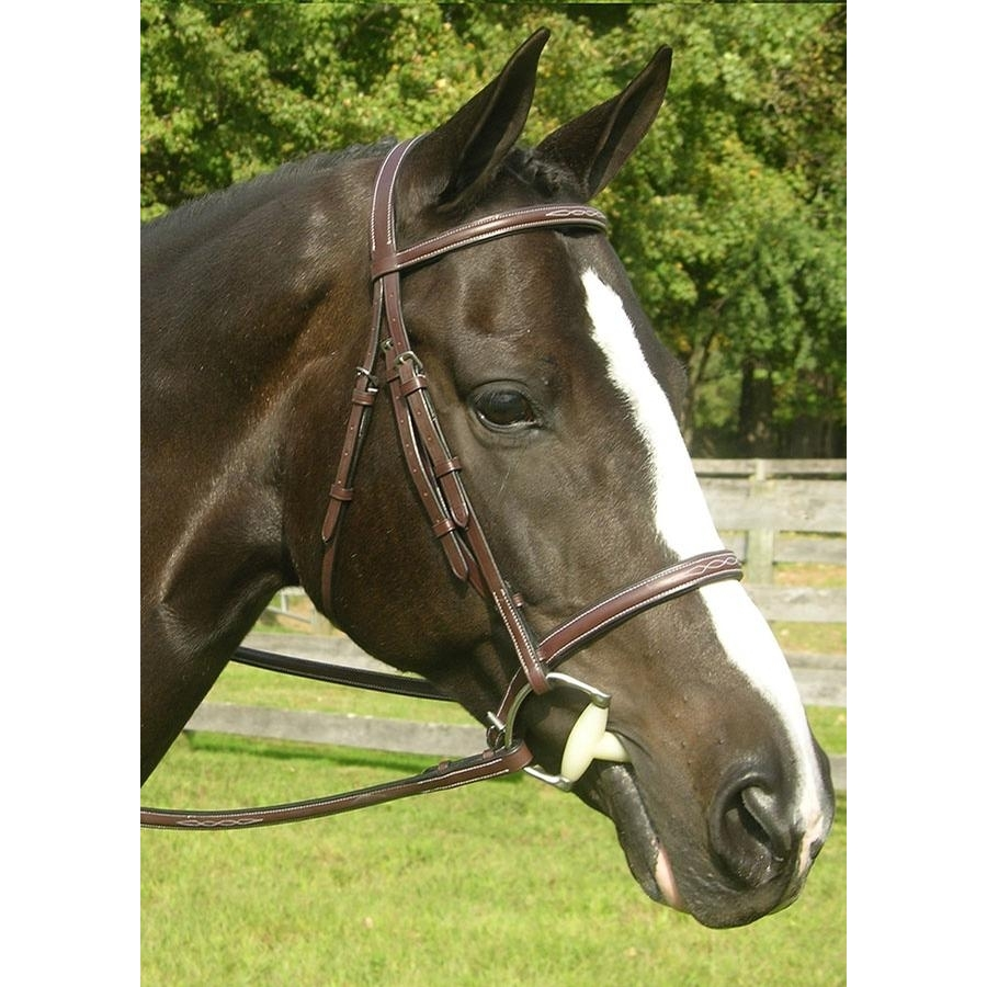 Sovereign Raised Fancy Stitched Padded Bridle