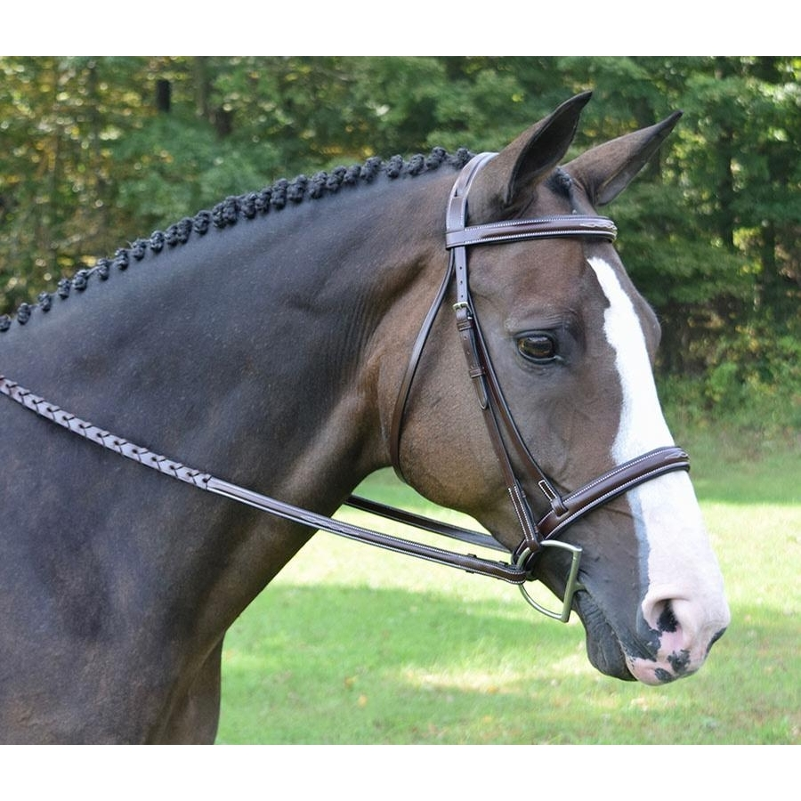 Spirit Raised Fancy Stitched Padded Bridle