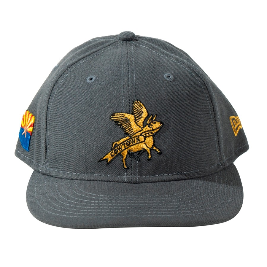 New Era / Flying Cow Embroidered Snapback (Grey)