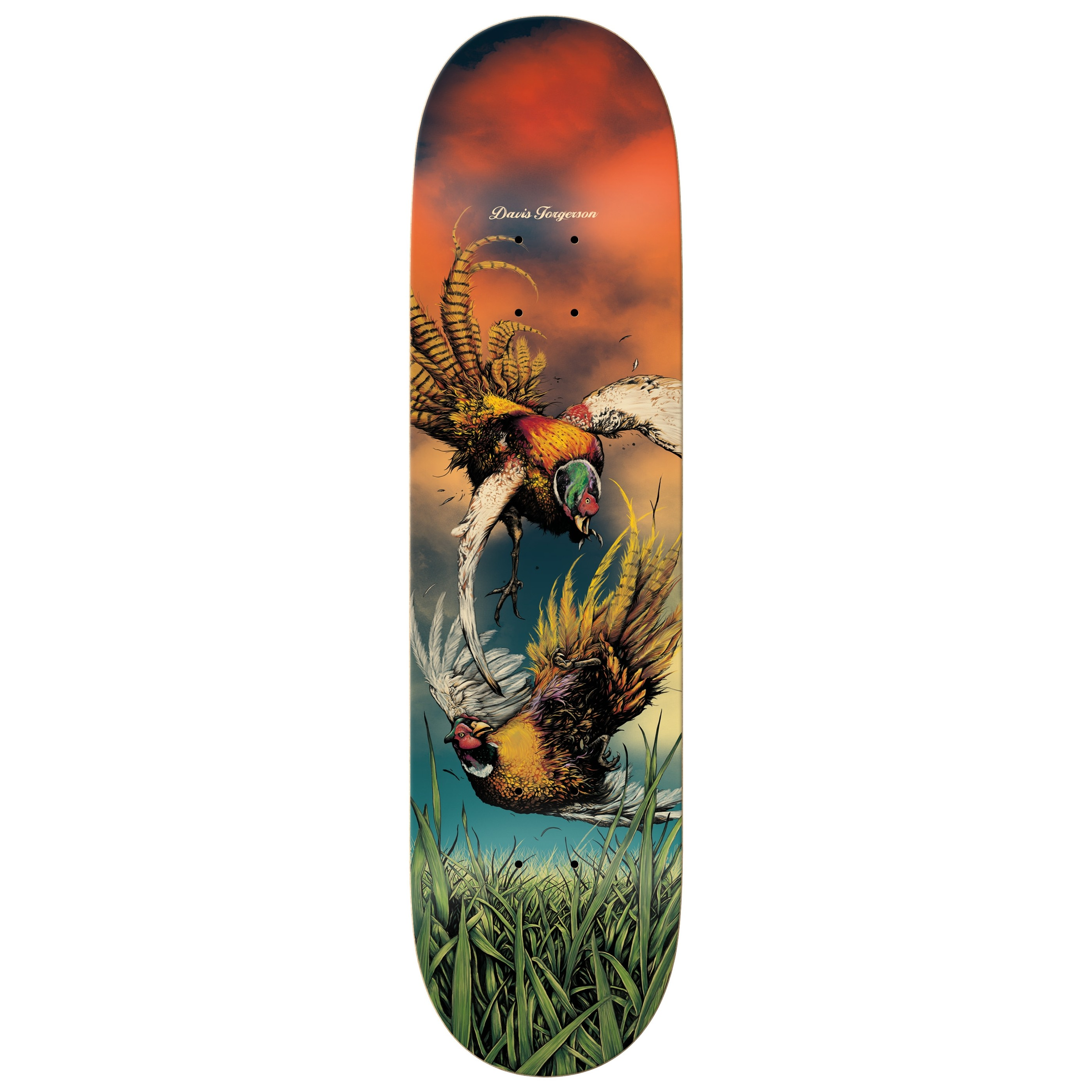 Torgerson Great Heights Deck (8.25)